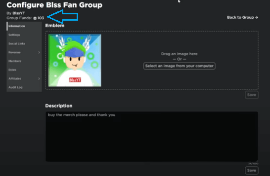 Roblox Group Funds